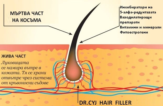 филър за коса